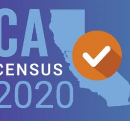 Image of a census 2020 promo